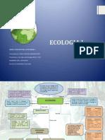 MAPA CONCEPTUAL ECOLOGIA .docx