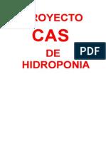 PROYECTO HIDROPONIA.doc