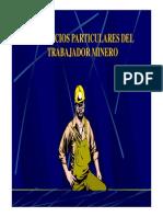 Beneficios Particulares Del Trabajador Minero
