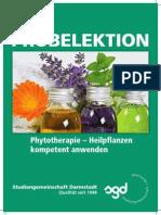 Phytotherapie Heilpflanzen