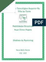analisis de mentoring.docx