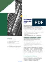 RESUMEN DEL PROCESO Medición de Sistemas SAP