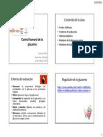 CtrlGlucemia_14Oct21.pdf