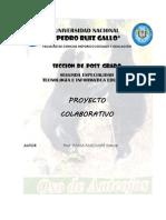 _Proyecto colaborativo tic.docx