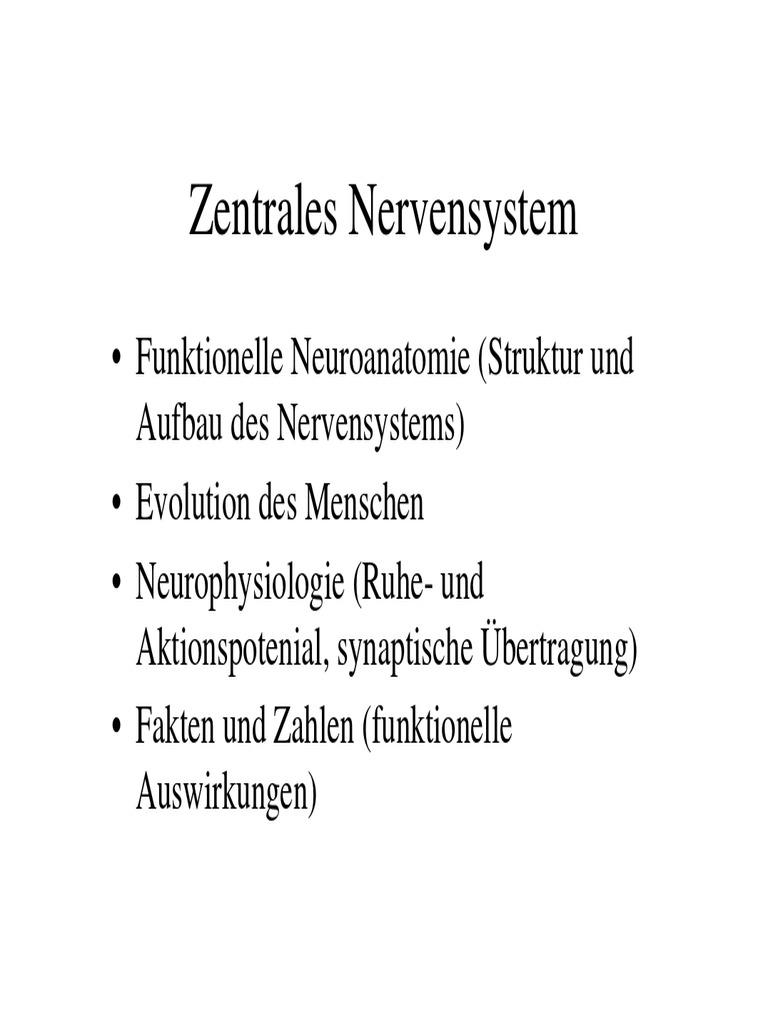 Gemütlich Oberarmknochen Fakten Ideen - Physiologie Von Menschlichen ...