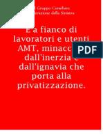 manifesto amt