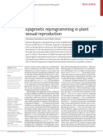 Epigenetic Reprogramming in Plant Sexual Reproduction