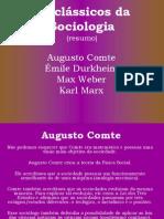 resumo sociologia