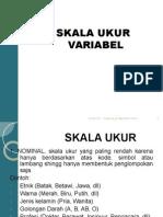 SKALA_VARIABEL