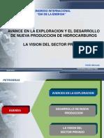 Vision Sector Privado Petrobras