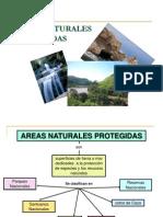 areasnaturalesprotegidas-