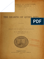 Bureau of Entomology -1905 -The Rearing Queen Bees