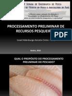Processamento Preliminar de Recursos Pesqueiros_Israel Cintra_UFRA