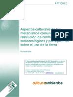 Aspectos Culturales de Mecanismos Comunitarios_DELVISO Andina