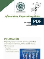 Inflamación, Reparación y Dolor
