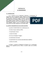 labc_usb_ve_paginas____s_guia_teorica_cap8_pdf.pdf