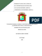 microcuenca jaillihuya.PDF