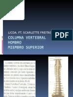 presentación Columna Vertebral
