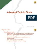 Struts Advanced Topic