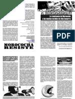 A-DESALAMBRAR #2 La resistencia de Morococha y las muchas batallas de Aida Gamarra.pdf