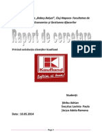 Raport de Cercetare Kaufland