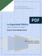 La Seguridad Pública Como Un Derecho Humano.