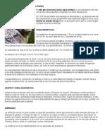 animales en peligro de extincion.doc