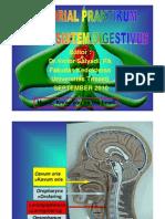 PDF Tutorial Model Sistem Digestivus 1a 2010