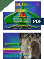 Tutorial Praktikum Cadaver Abdomen Revisi 20
