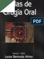 Atlas de Cirugia Oral -Bermudo