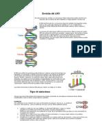 Revisión Del ADN