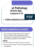 08 Cellular Adaptations and Disturbances of Growth