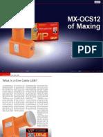 maxing.pdf