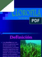 clorofila-100526182645-phpapp01.ppt