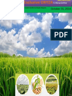 31st October, 2014 Daily Global Rice E-Newsletter by Riceplus Magazine