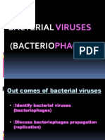 WEEK 3 Bacteriophage.ppt