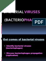 WEEK 3 Bacteriophage.ppt
