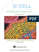 TheCell6