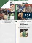 Manual de Identificación de Rocas y Minerales