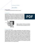 Revisión Bibliográfica Hipertrofia Adenoidea