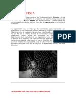 ORGANIMETRIA.doc