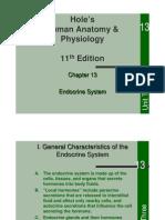 Endocrine System(13) 2