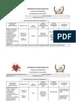 Diagnosticos y NOC de RNPT