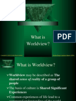 What is Worldview