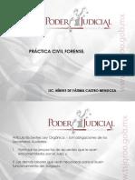 Diapositivas Practica Civil Forense