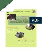 Info pH.pdf