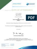 2014 ibap certificate en