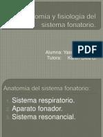 Anatomofisiología Del Sistema Fonatorio