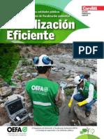 Nuevo Enfoque Ambiental 2014