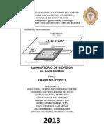 Informe de Campo Electrico